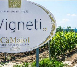 2019 JUL Ca Maiol Winery