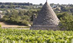 2017 JUL – Puglia Region