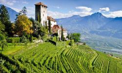 2016 AUG – Alto Adige