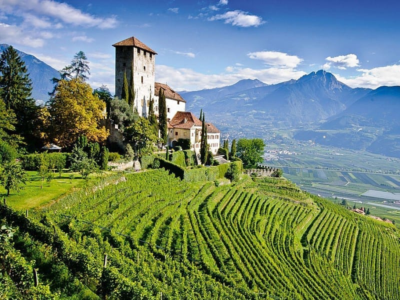 Wine Sessions: Alto Adige/Südtirol
