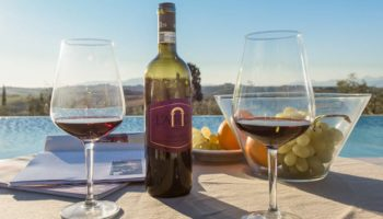03-12-2020 Wine Tasting L'Arco