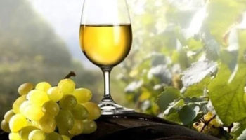 2021-03-01 Argentine Wine Tasting