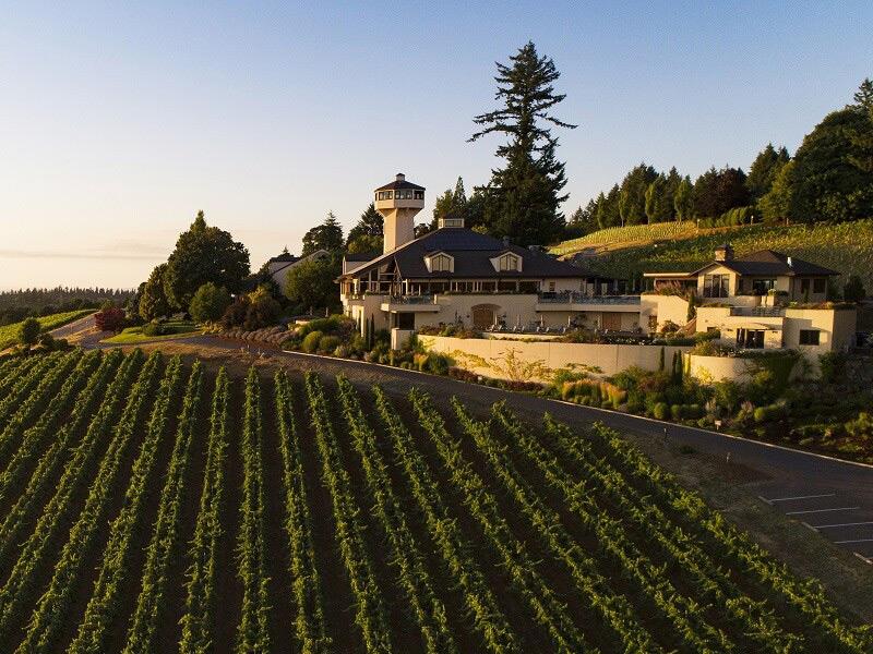2021-11-17 Willamette Valley Vineyards WINE TASTING